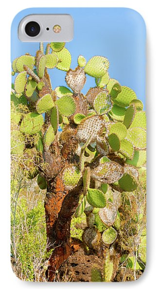 Cactus Trees In Galapagos Islands IPhone Case by Marek Poplawski
