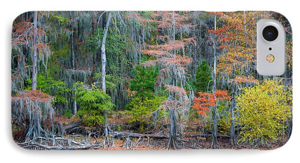 Caddo Lake Fall Foliage IPhone Case