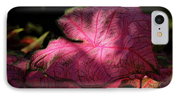 Caladium Mystery Phone Case by Suzanne Gaff