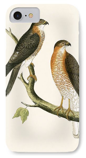 Calcutta Sparrow Hawk IPhone Case by English School