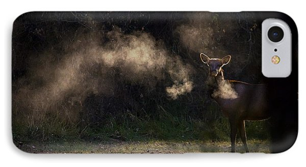 IPhone Case featuring the photograph Calf Elk In December by Michael Dougherty