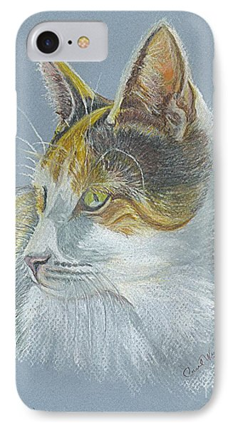 Calico Callie IPhone Case by Carol Wisniewski