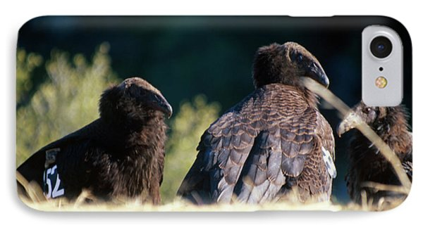 California Condors IPhone 7 Case by Soli Deo Gloria Wilderness And Wildlife Photography