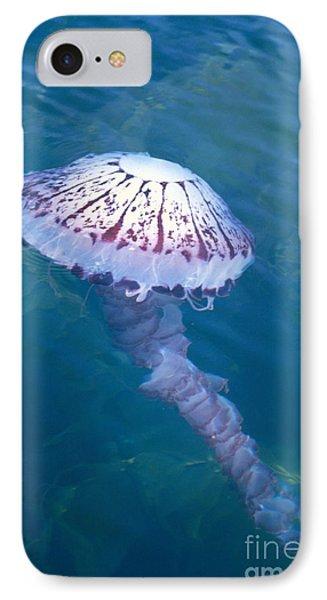 California Marine Life Phone Case by Bill Schildge - Printscapes