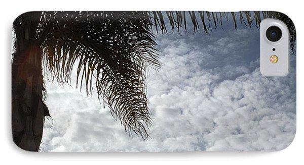 California Palm Tree Half View IPhone Case by Matt Harang