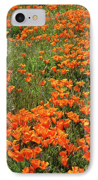 IPhone Case featuring the mixed media California Poppies- Art By Linda Woods by Linda Woods