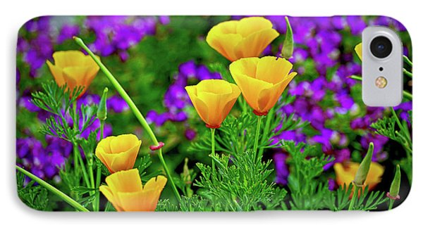 California Poppies IPhone Case by Michael Cinnamond