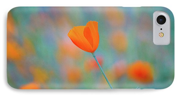 Spring Poppy IPhone Case by Anthony Bonafede
