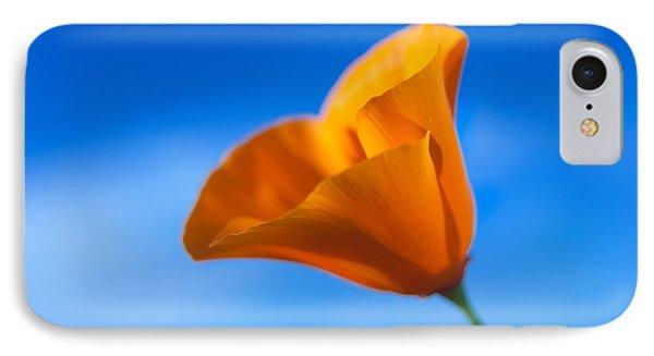 California Poppy IPhone Case by Ralph Vazquez