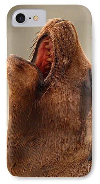 IPhone Case featuring the photograph California Sea Lion Calling Out by Max Allen