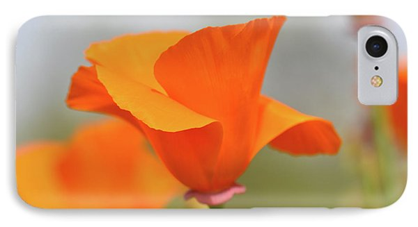 California State Poppy Macro IPhone Case