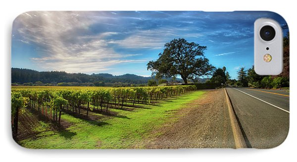California Wine County Road- Sonoma Vineyard And Lone Oak Tree IPhone Case by Jennifer Rondinelli Reilly - Fine Art Photography