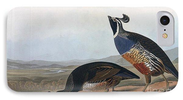 Californian Partridge Phone Case by John James Audubon