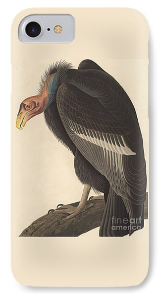 Californian Vulture IPhone 7 Case by John James Audubon