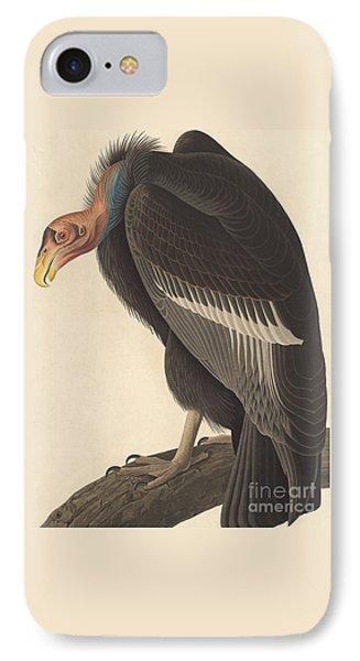 Californian Vulture IPhone Case by John James Audubon