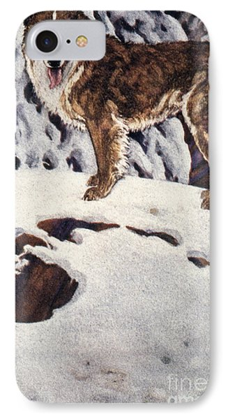 Call Of The Wild, 1903 Phone Case by Granger