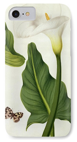 Calla Aethiopica With Butterfly And Caterpillar  IPhone Case