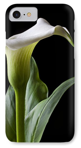 Calla Lily With Drip IPhone 7 Case