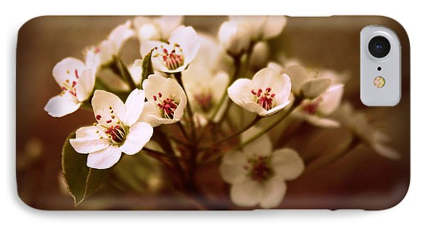 Callery Pear IPhone Case by Jessica Jenney