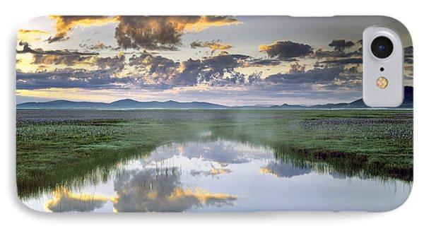 Camas Marsh IPhone Case by Leland D Howard