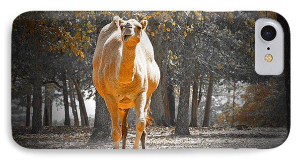Camel Phone Case by Douglas Barnard