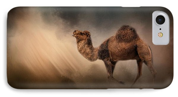 Camel In The Spotlight IPhone Case by Jai Johnson