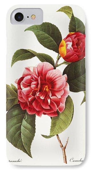 Camellia, 1833 Phone Case by Granger