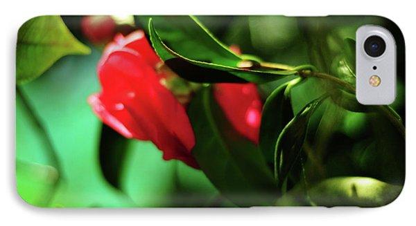Camellia Dream Phone Case by Rebecca Sherman