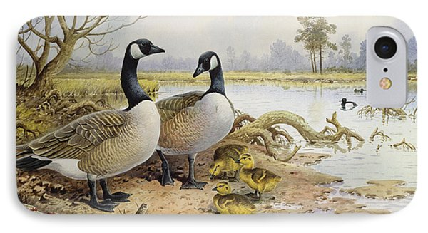 Canada Geese IPhone Case by Carl Donner