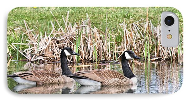 Canada Geese IPhone Case by Debbie Stahre