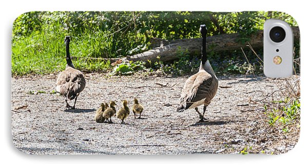 Canada Geese Family Walk IPhone Case