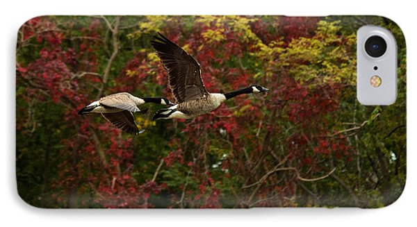 Canada Geese In Autumn Phone Case by Angel Cher