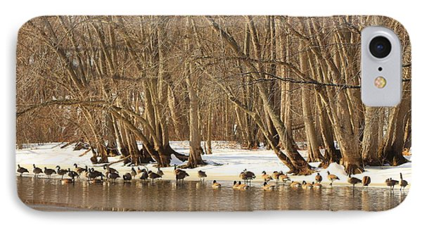 Canada Geese On Concord River Phone Case by John Burk