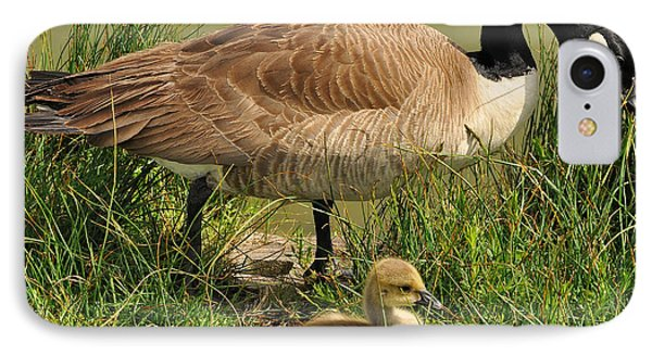 Canada Geese Parent And Child  Phone Case by Merrimon Crawford