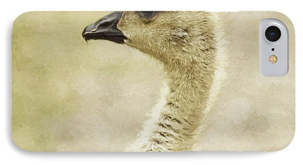 Canada Goose Gosling Photo Art  Square IPhone Case by Sharon Talson
