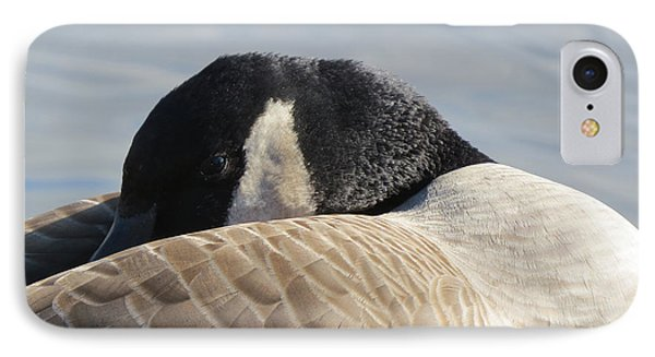 Canada Goose Head Phone Case by Mary Mikawoz