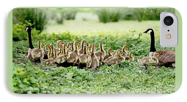 Canada Gosling Daycare IPhone Case by Rona Black