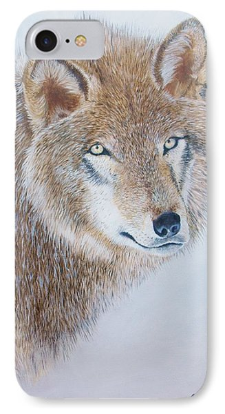 Canada Grey Wolf. IPhone Case by Jean Yves Crispo