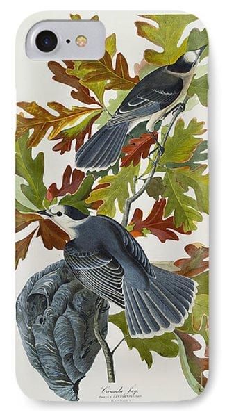 Canada Jay IPhone Case by John James Audubon