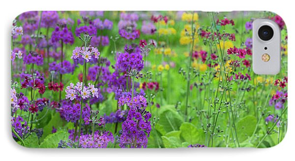 Candelabra Primula Panoramic IPhone Case by Tim Gainey