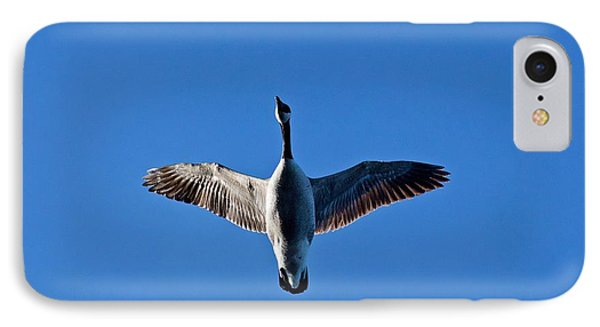 IPhone Case featuring the photograph Candian Goose In Flight 1648 by Michael Peychich
