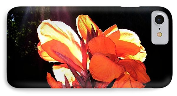 Canna Lily Phone Case by Will Borden