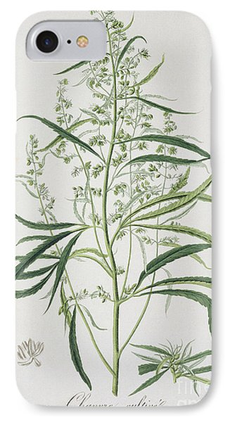 Cannabis IPhone Case by LFJ Hoquart