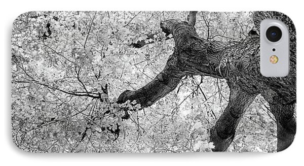 Canopy Of Autumn Leaves In Black And White IPhone Case by Tom Mc Nemar