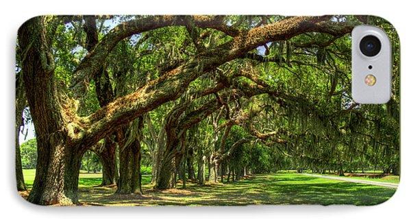 Canopy Of Shade Ave Of Oaks Sea Island Georgia Art IPhone Case