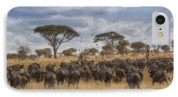 Cape Buffalo Herd IPhone Case by Kathy Adams Clark