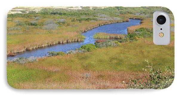 Cape Cod National Seashore Small Swamp Trail Early Autumn IPhone Case by John Burk
