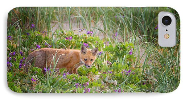 Cape Cod Red Fox Kit IPhone Case by Bill Wakeley