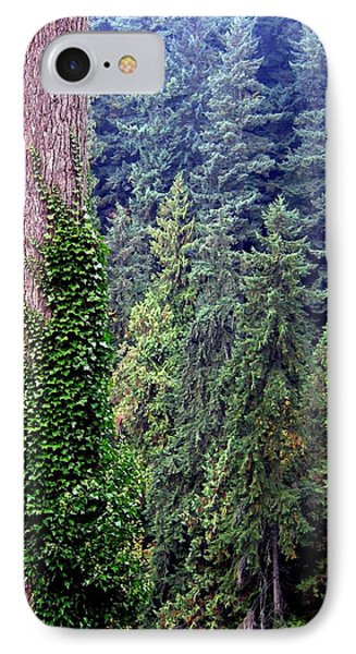 Capilano Canyon Ivy Phone Case by Will Borden