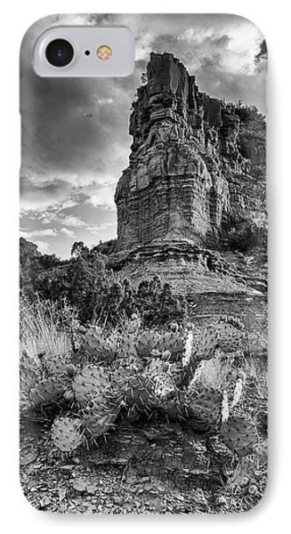 IPhone Case featuring the photograph Caprock And Cactus by Stephen Stookey